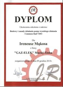 certyfikat JR Irek 2 218x300